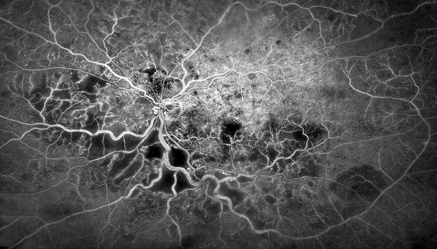 , Как это работает: 20 самых удивительных фото из мира науки