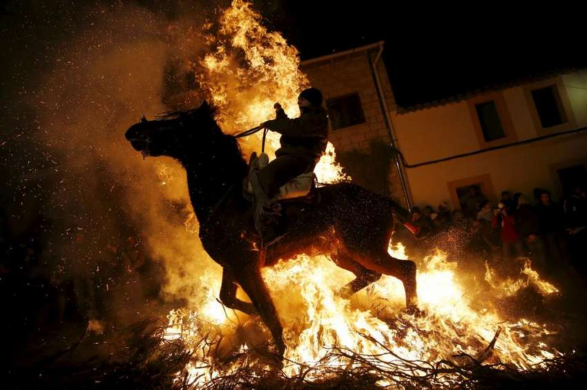 "A man rides a horse through the flames during the ""Luminarias"" annual religious celebration on the eve of Saint Anthony's day, Spain's patron saint of animals, in the village of San Bartolome de Pinares, northwest of Madrid, Spain, January 16, 2016. According to tradition that dates back 500 years, people ride their horses through the narrow cobblestone streets of this small village to purify the animals with the smoke of the bonfires. REUTERS/Susana Vera"